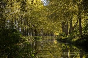 Canal du midi (Ludovic Lubeigt - Flickr)