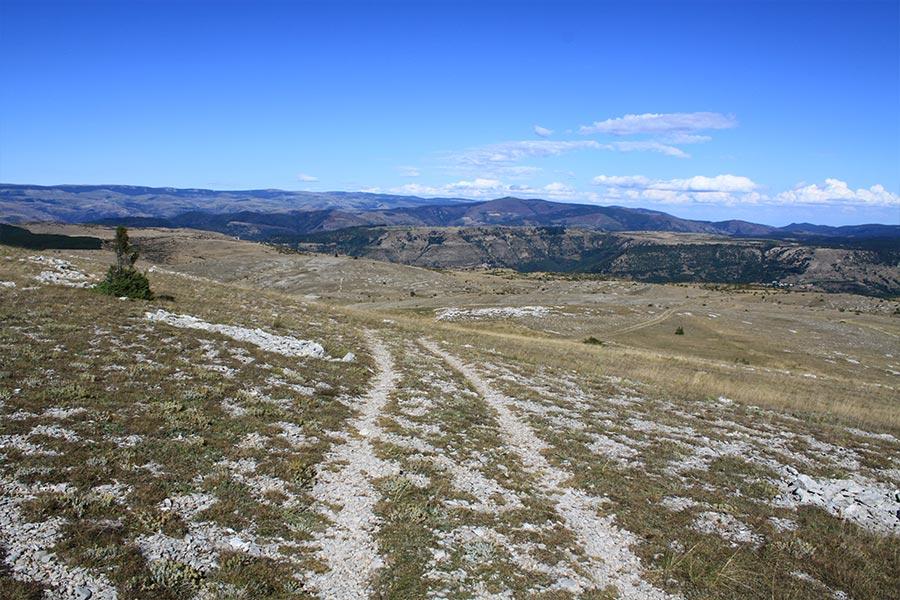 Pelouse sèche steppique (Habitat Natura 2000 : 6210) sur le Causse Méjean.