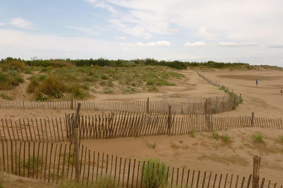 en zone très fréquentée, la canalisation des passages pour accéder à la plage, une méthode simple et efficace pour préserver la dune vive d'un piétinement néfaste (Méditerranée).